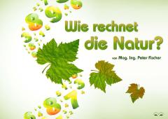 Mag. Ing. Peter Fischer